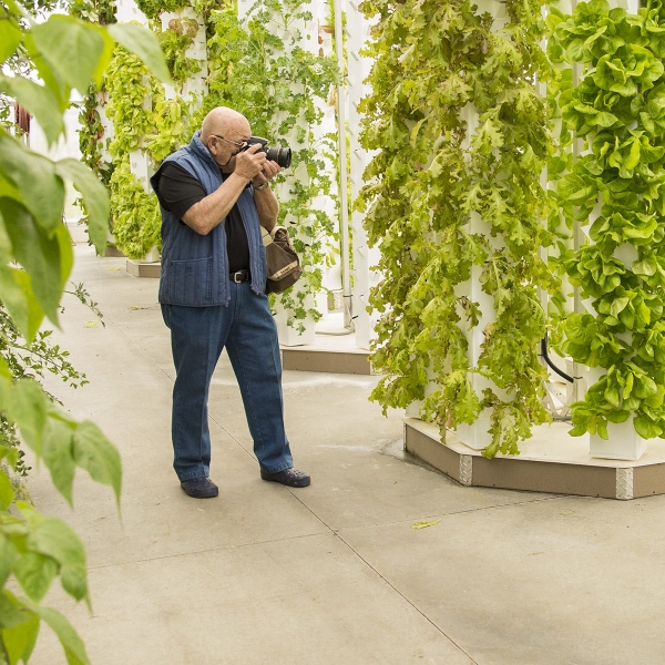 Art capturing the beauty of life in lancaster county greenhouse.